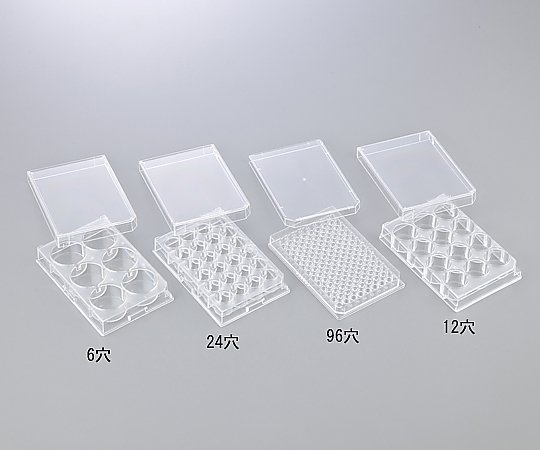 AS ONE 1-8355-04 Microorganisms Culture Plate Holes (12 holes (flat bottom))